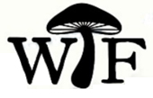 What the Fungus Logo
